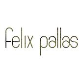 Slide Felix-pallas